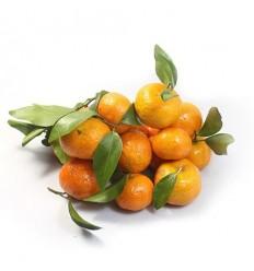 皮薄超甜!本地砂糖桔 tangerine 约500g