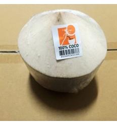 新鲜椰子/ 椰青 COCO 约900-1000g/个