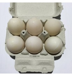 本地产农家土鸭蛋6个装 Fresh duck's egg