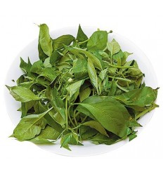 辣椒叶 pepper Leaves 约200g