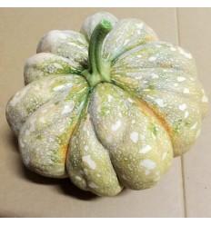 有机大南瓜 Taro Pumpkin 3€/Kg