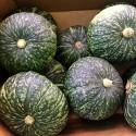 (巨特惠)日本贝贝小南瓜 Japanese Pumpkin 每个约2-2.5Kg