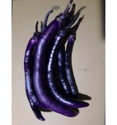 有机紫长茄 Chinese Long Eggplant 约400g