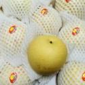 皇冠梨2个装 Crown Pear 2个