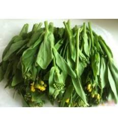 油菜苔 Pak Choi Sum 约300g
