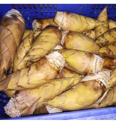 冬笋 Winter Bamboo