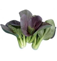 紫油菜 Purple Pak Choi 约300g