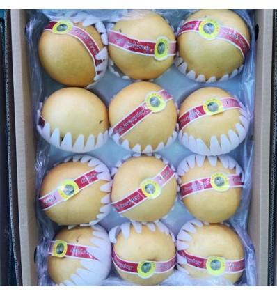 韩国进口顶级新高梨 Korean SinKo Pear 2个约750g