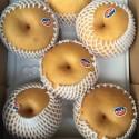 韩国进口顶级新高梨 Korean SinKo Pear 1个约450g