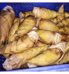 大号中国冬笋(单个) Winter Bamboo 约600-700g