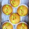 (整盒6个5Kg)韩国进口顶级特大号新高梨 Korean SinKo Pear