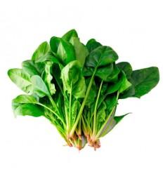 本地菠菜 Spinach 1扎 约400g