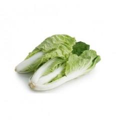 黄金菜/黄芽菜 Golden cabbage 400g