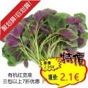 有机红苋菜 Red Amaranth 约300g