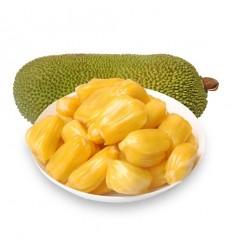 大树菠萝 / 菠萝蜜 Jackfruit 约300g