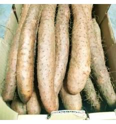 (易断品)法国鲜山药 Fresh Yam 按条销售