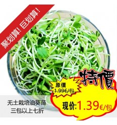 菜园无土栽培葵花籽芽苗 /油葵苗 Sunflower Spout 约250g