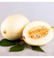 甜瓜/香瓜 Chinese Melon 按个销售
