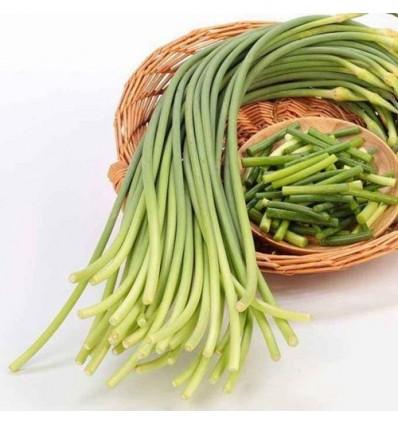 蒜苔/蒜芯 Garlic Spout 约400g