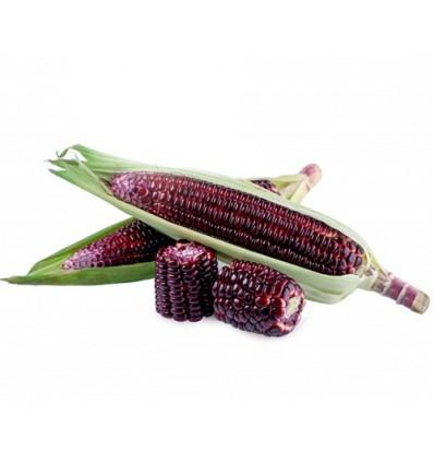 有机紫糯玉米 Sweet Corn 2个