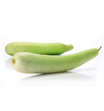 有机广东白瓜 Cantonese Cucumber 2条约500-600g