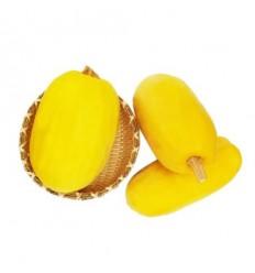 有机金丝鱼翅瓜 Golden Yuchi Kwa 约0.8-1Kg