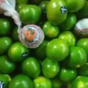 本地青皮蜜桔 Green tangerine 约400-450g