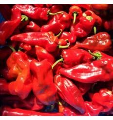有机长红辣椒(中辣)Red Chili 200g
