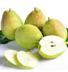 库尔勒香梨 Xinjiang Pear 2个