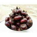 新鲜马蹄 / 荸荠 Water Chestnut 500g