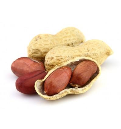 花生 Peanut