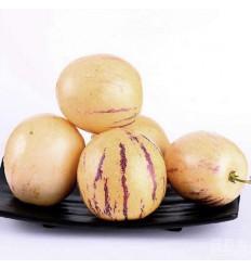 本地新鲜人参果 pepino dulce 约300-400g