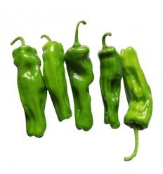 有机鲜香青辣椒(微辣)Green Chili 200g