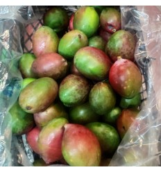 巴西芒果 Brasilian Mango 1个约400g