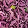 红扁豆 Red lentils 约500g