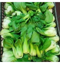 有机种植上海青 Shang Hai Pak Choy 约300g