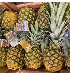 新鲜精品菠萝 pineapple 1只