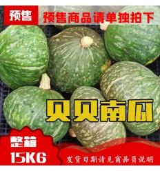 (9月6日发货) 整箱*贝贝栗子南瓜 15kg Japanese Pumpkin