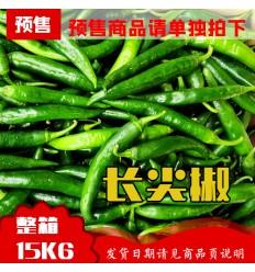长青辣椒(中辣)Green Chili 一箱3Kg