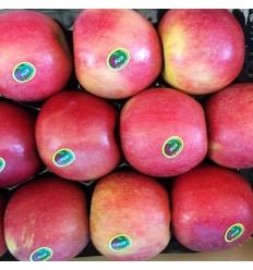 本地冰糖心爽脆甜红富士超大苹果 Fuji Apple 约 0.9~1.1Kg