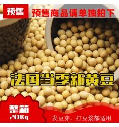 (超大包装20Kg)法国产本地当季黄豆(豆浆,豆芽适用) Soy beans