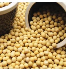 (大包装5Kg)法国产本地当季黄豆(豆浆,豆芽适用) Soy beans