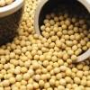 (1Kg小包装)法国产本地当季黄豆(适合发豆芽) Soy beans