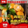 (10月25日发货)(A+B)整箱10Kg*超甜!本地薄皮沙糖桔(小蜜桔) tangerine