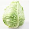 西班牙甜脆牛心菜 Spanish Cow Cabbage 1个