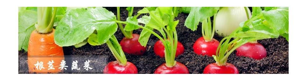 根茎类蔬菜